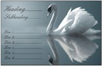 Business card design - Swan Reflection